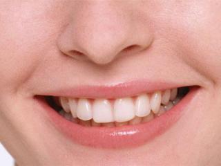 Skripanje zubima paraziti - Post taur biologie. Etapele de dezvoltare a AVC