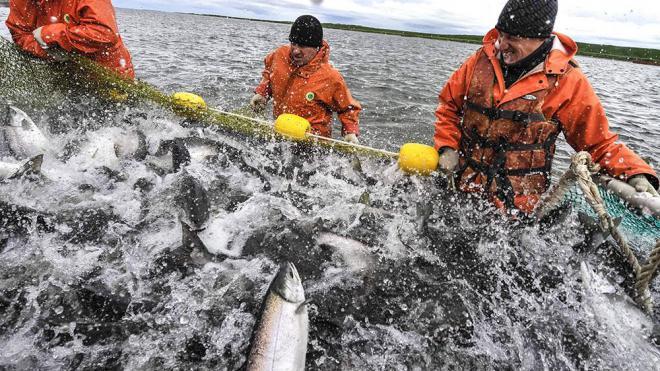 работа на севере рыбаками
