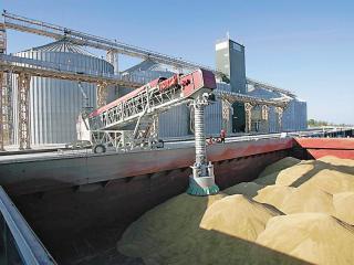 Почему экспортеры спешат вывозить зерно