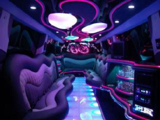 Открыть ночной клуб что надо эротическое шоу ночь