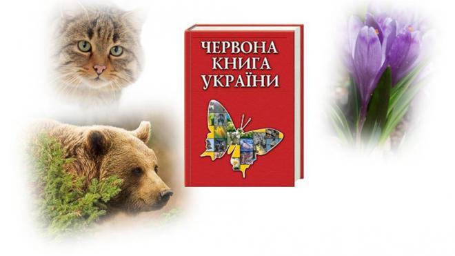 В Украине усилили охрану растений и животных из Красной книги | ubr.ua