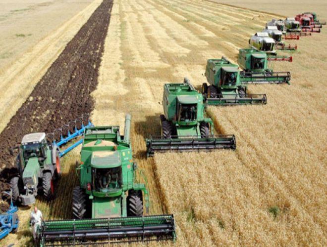 Кабмин выделил украинским аграриям 4,5 млрд грн