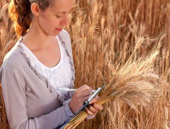 В агросекторе не хватает квалифицированных работников