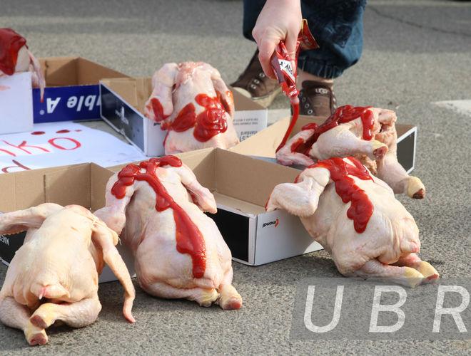 Кто и зачем забросал АП куриными тушками