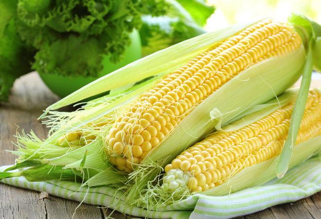 Украинская кукуруза завоевывает рынки Африки и Ближнего Востока