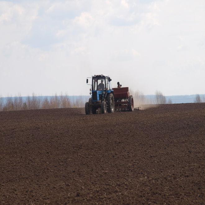 Аграрии 15 областей Украины начали посевную