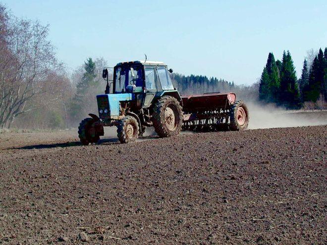 В Украине уже посеяли 26% раниих зерновых