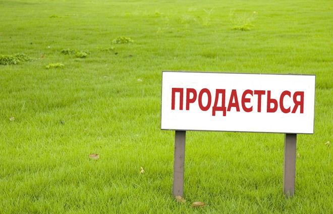 Стало известно, как будут продавать землю в Украине