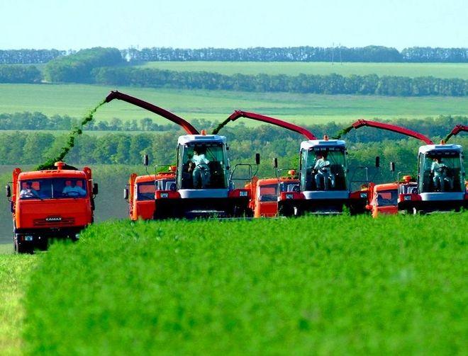 Украинским аграриям пообещали крупную сумму денег