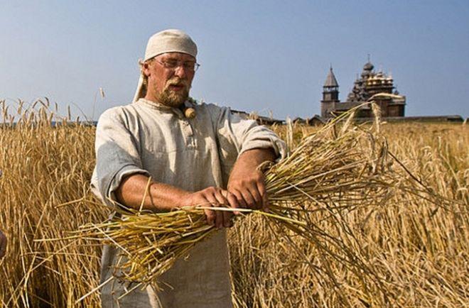Правительство увеличило финансирование аграриев в 15 раз