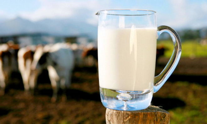 Сравнили цены на молоко в Украине и Европе