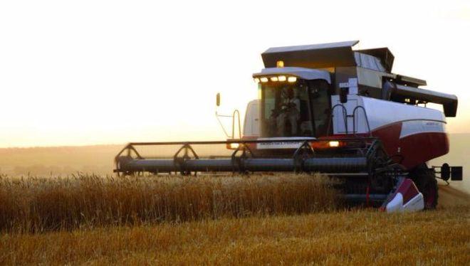 В Госстате констатировали сокращение рентабельности сельхозпроизводства