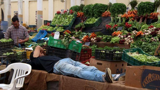 Украина стала больше экспортировать агропродукции и меньше импортировать