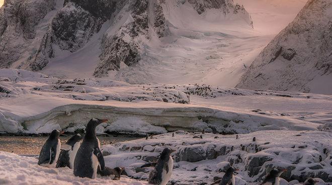 Французский фотограф показал удивительную Антарктику