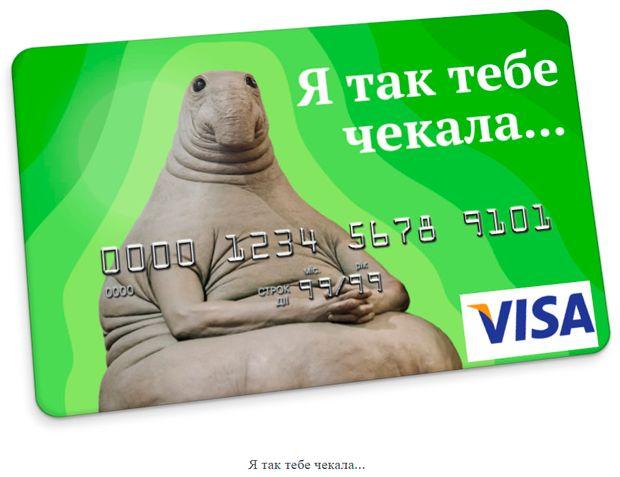 Украинский дизайнер создает смешные банковские карты