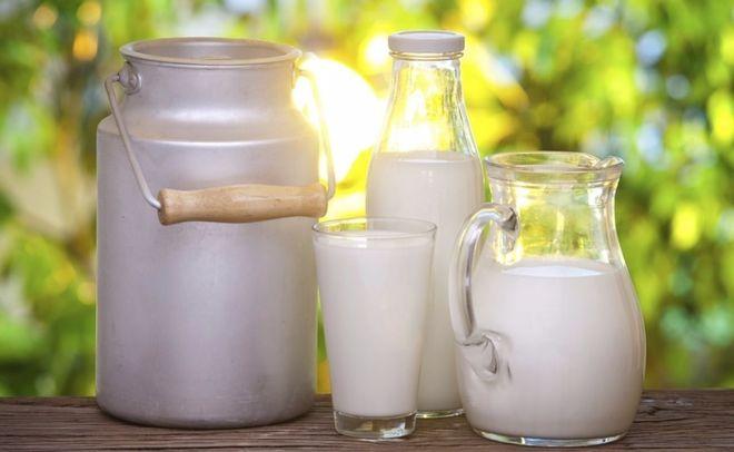 Украина закупила крупные партии молока в Германии и Польше