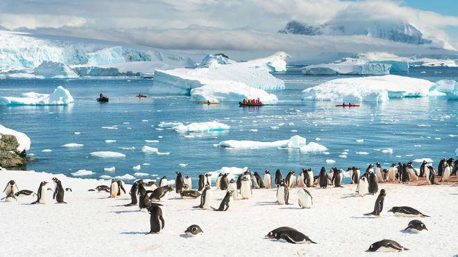 Украина и Австралия будут совместно исследовать Антарктиду