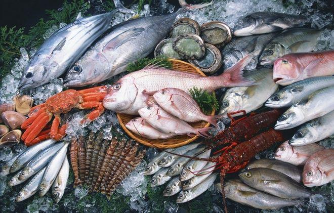 В Украине можно будет застраховать рыбу