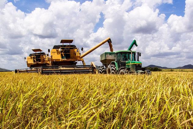 Крупнейший агрохолдинг купил 8 предприятий в Украине