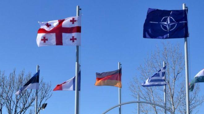 Парламентская ассамблея НАТО поддержала Грузию на пути в альянс