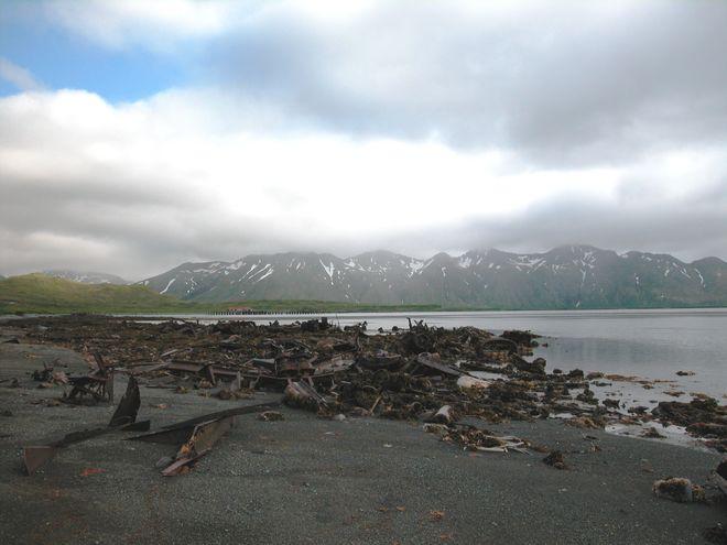 У берегов Аляски зафиксировано мощное землетрясение