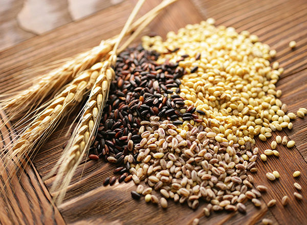 ГПЗКУ активно закупает яровые культуры урожая 2017 года