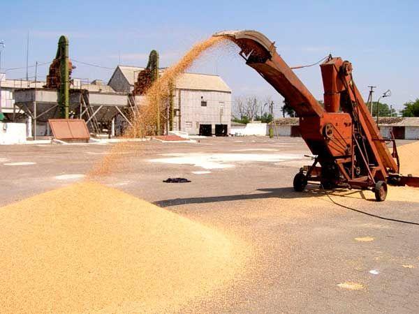 ГПЗКУ заготовила рекордные объемы зерновых