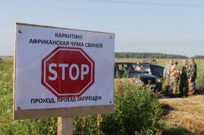 Украина закупит современное оборудование для диагностики АЧС