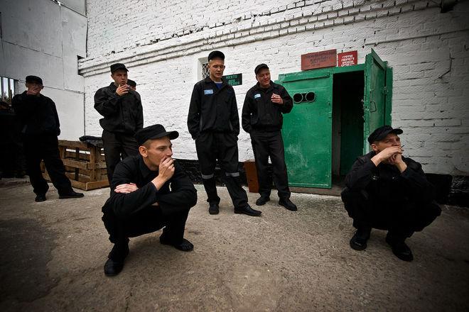 Японцы будут производить электрокабель в украинских тюрьмах