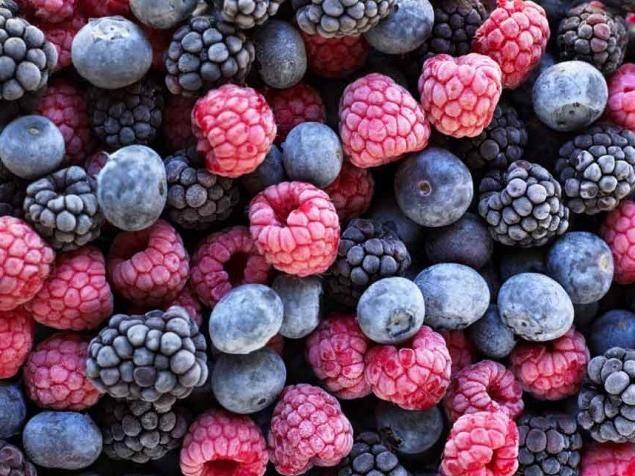 В Украине открыли современный комплекс шоковой заморозки фруктов и ягод