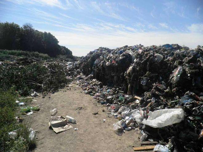 Под Киевом обнаружили 40 тонн львовского мусора