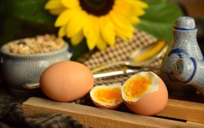 Крупнейший производитель яиц увеличил прибыль