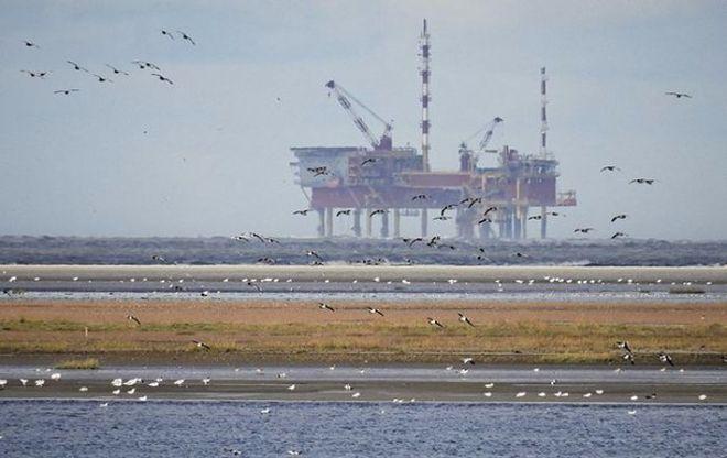 Нефть Brent преодолела отметку в 50$ за баррель