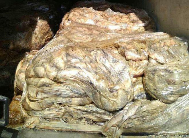Под Киевом обнаружили грузовик с гнилой рыбой