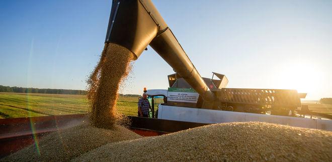 Уборку ранних зерновых уже закончили в 5 областях