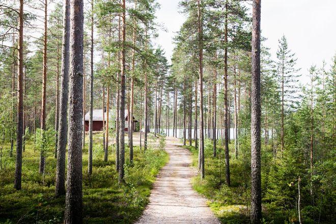 Группа украинцев пропала без вести в Финляндии