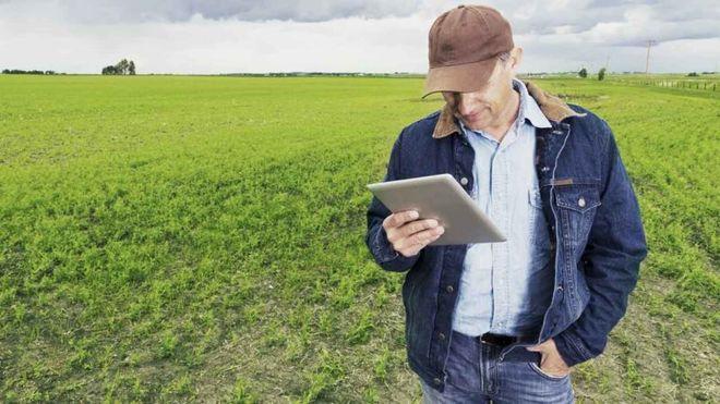 «Киевстар» создаст мобильное приложение для аграриев