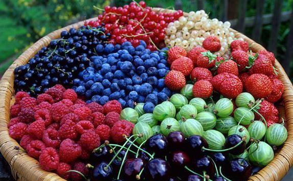 Украинские производители ягод объединились