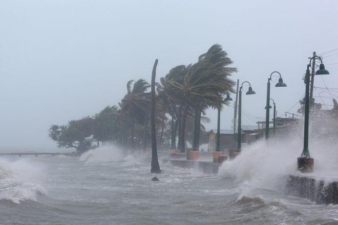 Из-за урагана Флорида может остаться без урожая