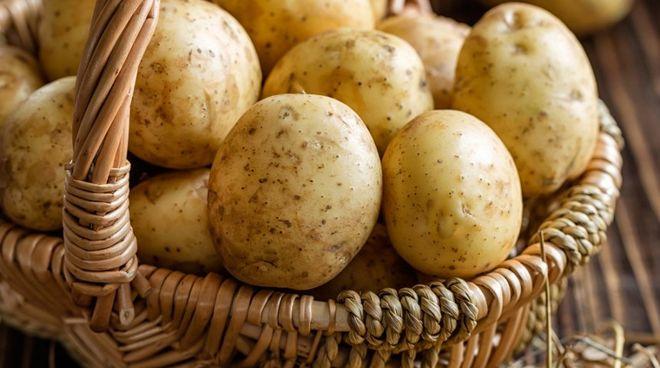 Урожай с гнильцой: Украине грозит дефицит хорошей картошки