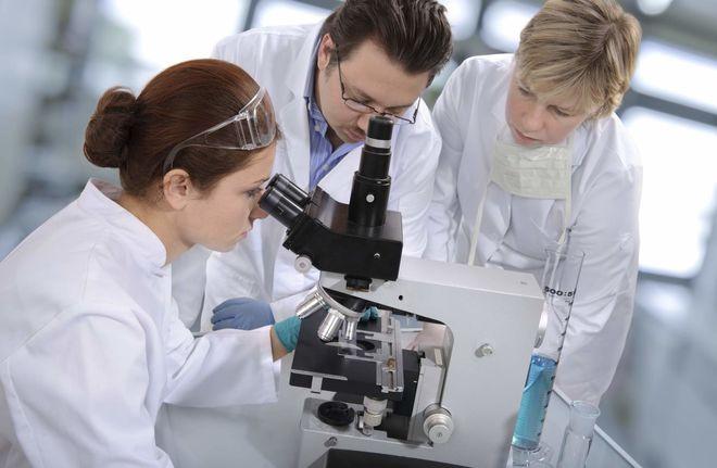 Госфинансирование получат 123 научные проекты молодых ученых