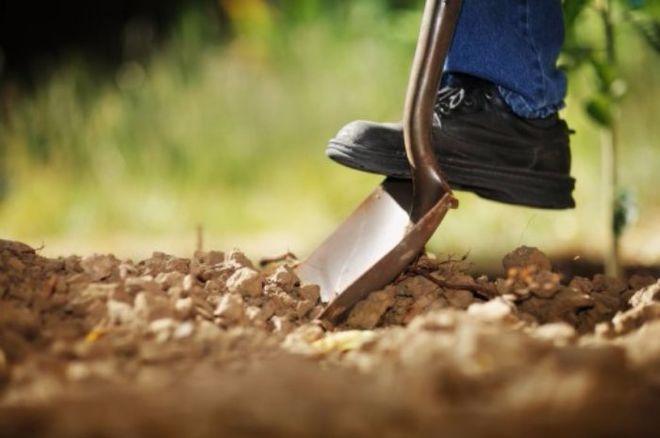 Всемирный банк потребовал внести изменения впроект украинской пенсионной реформы