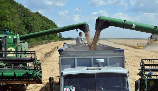 Украина экспортировала неменее 10 млн тонн зерновых