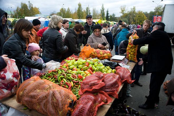 В Киеве опять будут проводить сельскохозяйственные ярмарки