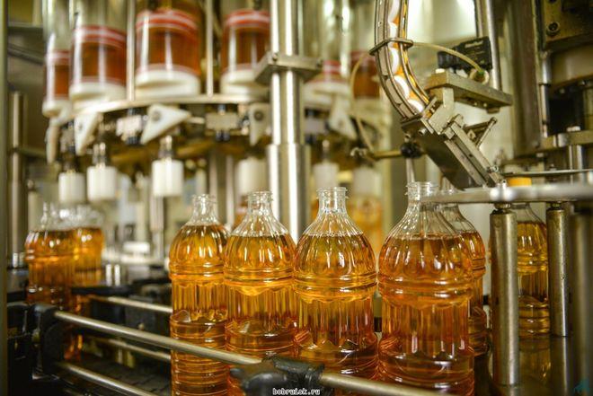 Украина стремительно наращивает экспорт подсолнечного масла