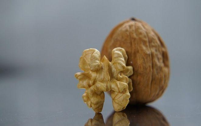 Украина активно увеличивает экспорт очищенных орехов