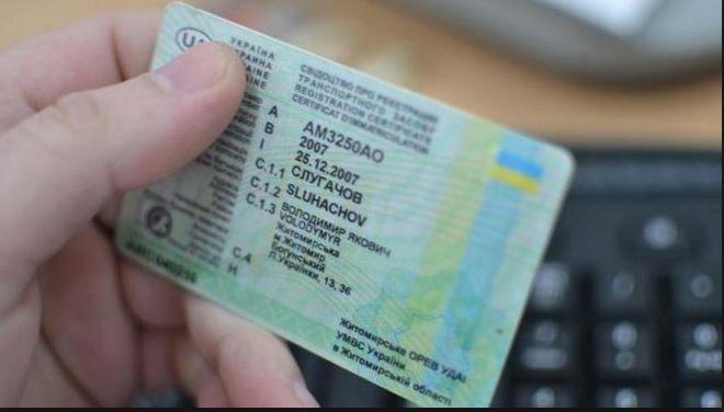 Первые водительские права МВД хочет выдавать на2 года