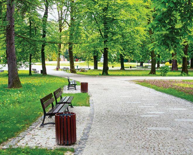 Столичные власти рассказали, сколько парков отремонтировали за год