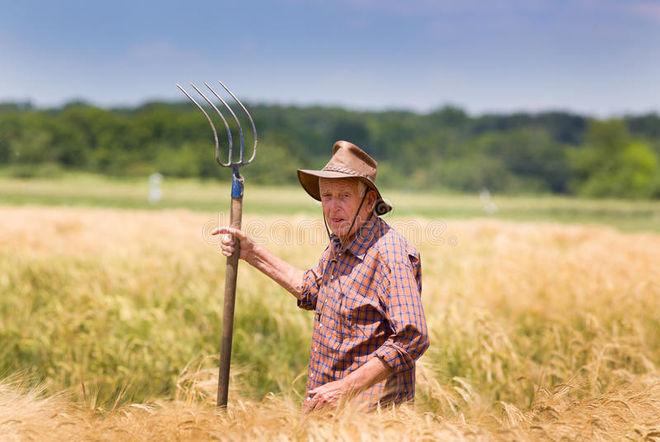 Аграрии стали больше зарабатывать