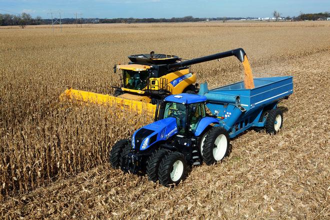 Рентабельность в сельском хозяйстве упала вдвое: что теперь выгодно выращивать
